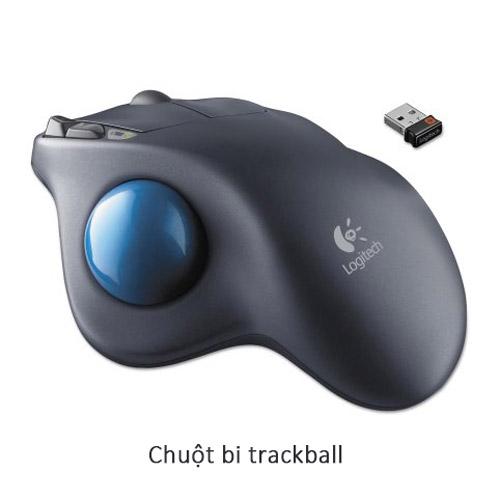 Chuột bi trackball