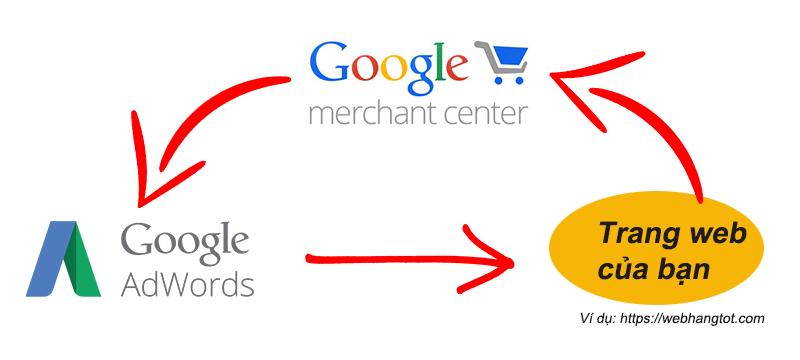 Google Ads- Merchant Center - Website của bạn